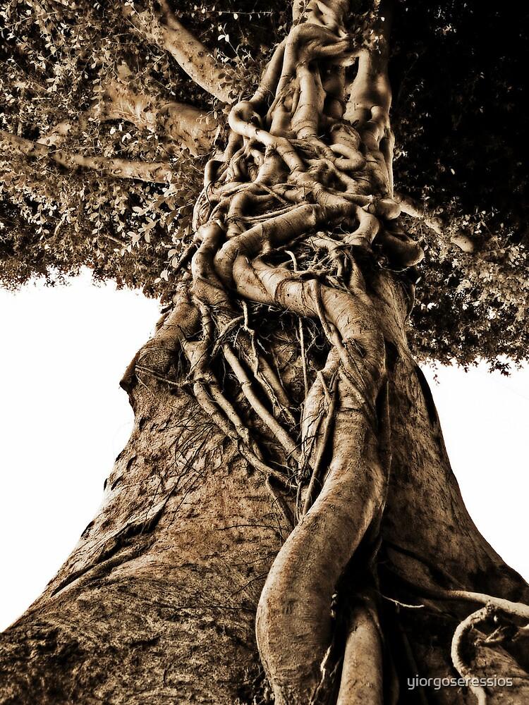 full story tree by yiorgoseressios