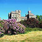 Lewis Castle by Kevin Meldrum