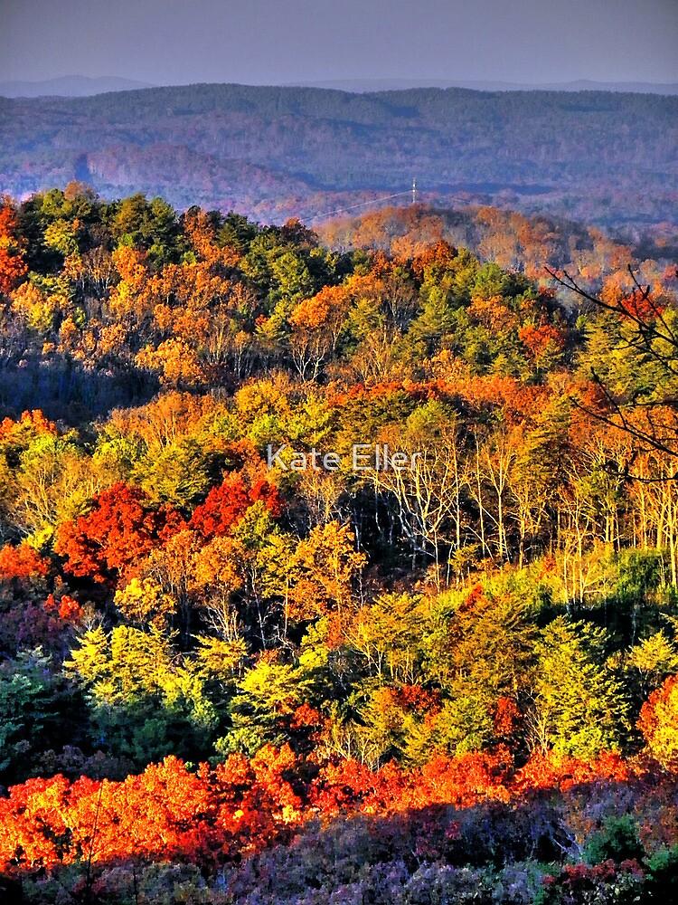 Mountain Fall by Kate Eller