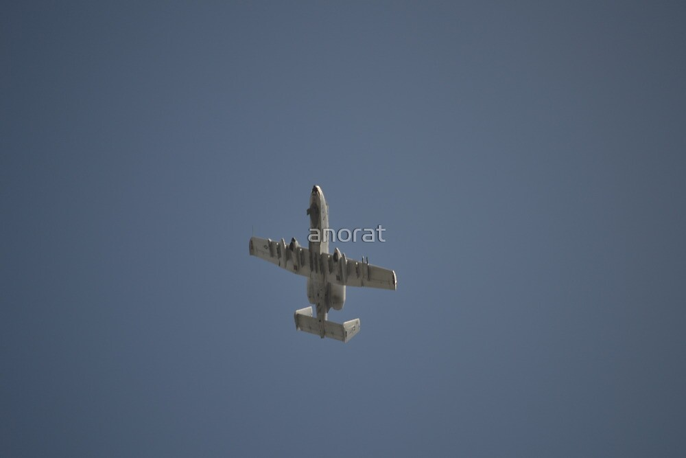 A-10 Warthog Flying over Homestead-Miami Speedway by anorat