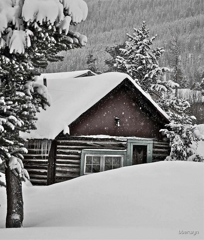 January - Frisco cabin. by bberwyn