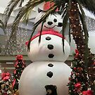 Frosty At The Mall by R&PChristianDesign &Photography