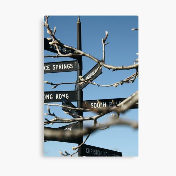 Which Way, McLaren Vale Canvas Print