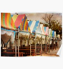 Fashionable Picnic Tables Poster