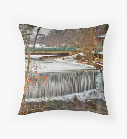 Icy Conditions Throw Pillow