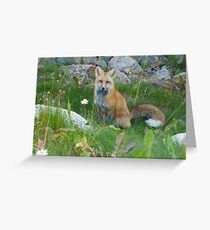 September - Friendly Fox. Greeting Card