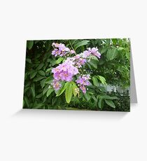 An exotic purple dance Greeting Card