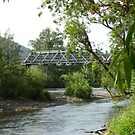 Bridge over the river at Barrington, via Barrington tops National Park NSW  by Virginia McGowan
