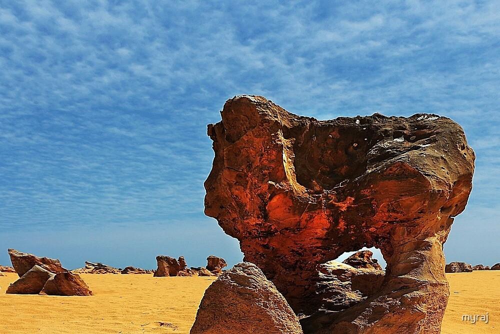 A Window in the desert by myraj