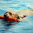 Swim! by Anne Zoutsos