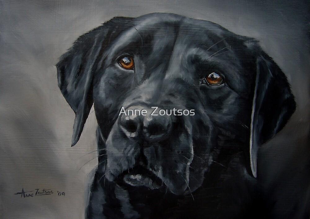 Black Beauty by Anne Zoutsos