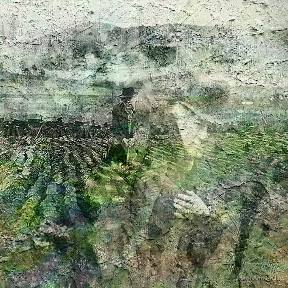 Field Work by Mary Ann Reilly