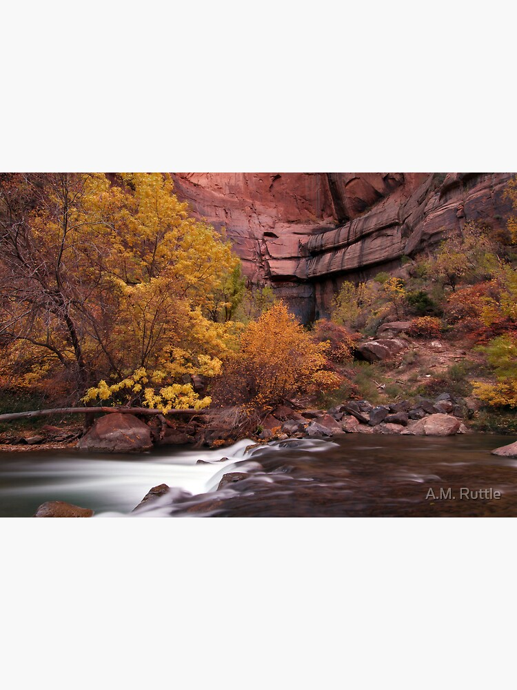 Fall Colors in Zion's Temple of Sinawava by annruttle