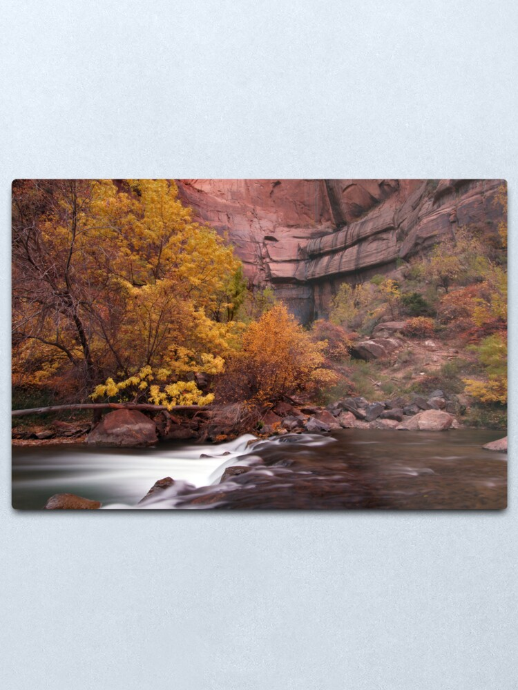 Alternate view of Fall Colors in Zion's Temple of Sinawava Metal Print