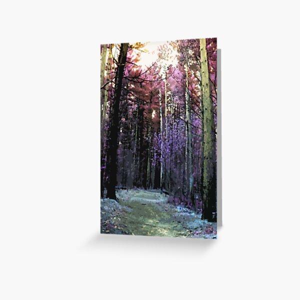 Grass River Trail.. Greeting Card