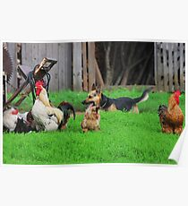 Rural landscape with farm animals. Poster