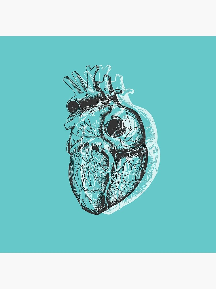 Anatomical Heart • Turquoise • Pastel Goth by rike-mayer