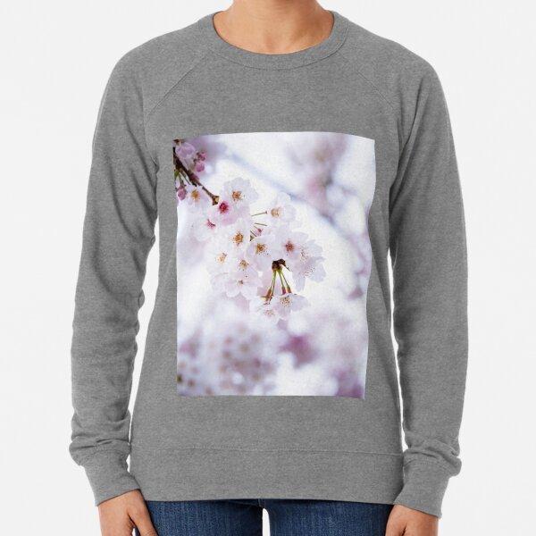 Sakura douceur poudrée Sweatshirt léger