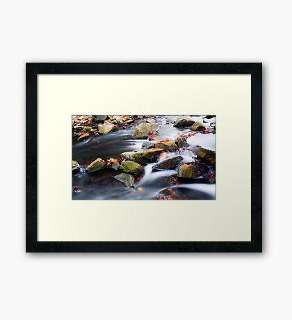 Rocks and Leaves Framed Print