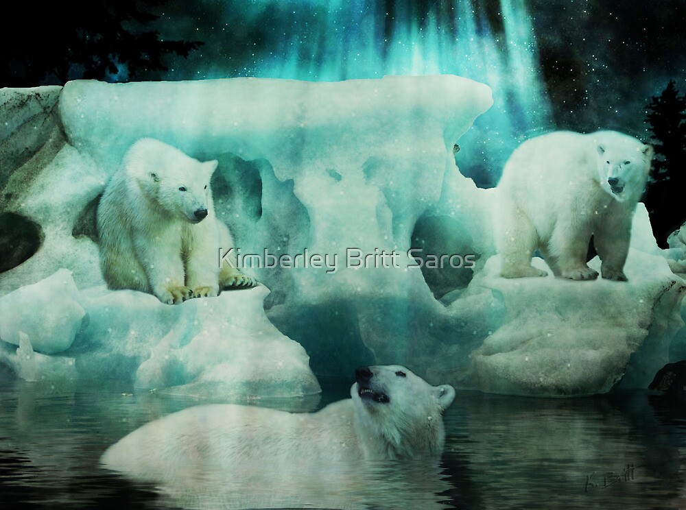 Polar Playground by KBritt