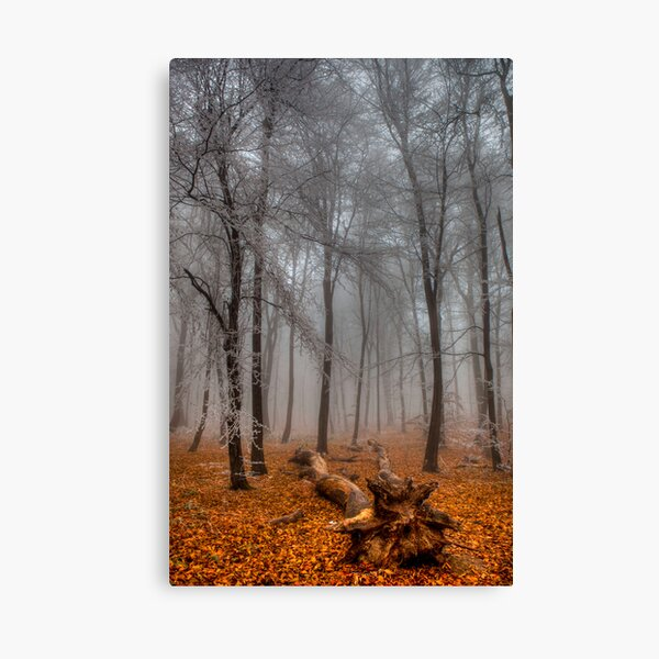 The End of Autumn Canvas Print
