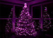 PURPLE CHRISTMAS by Lori Deiter