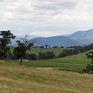 Coldstream, Victoria panorama by rjpmcmahon