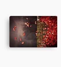 Red leaves and water Canvas Print