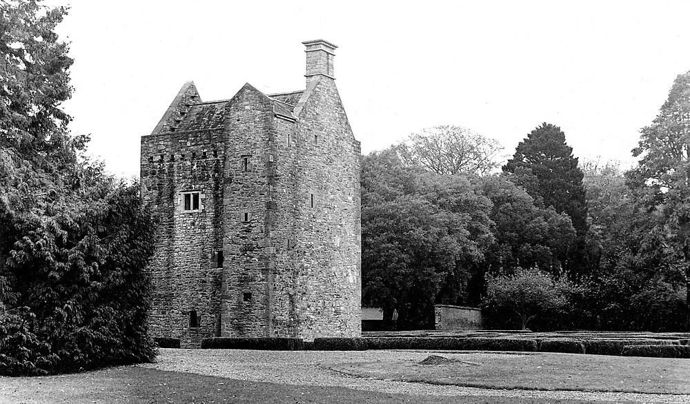 Ashtown Castle, Phoenix Park, Dublin by Dave  Kennedy