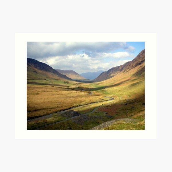 Newlands Valley Art Print