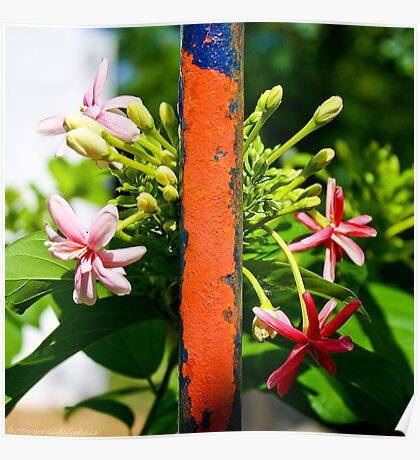Flowers Versus Iron Poster