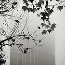 Foggy Paris by laurentlesax