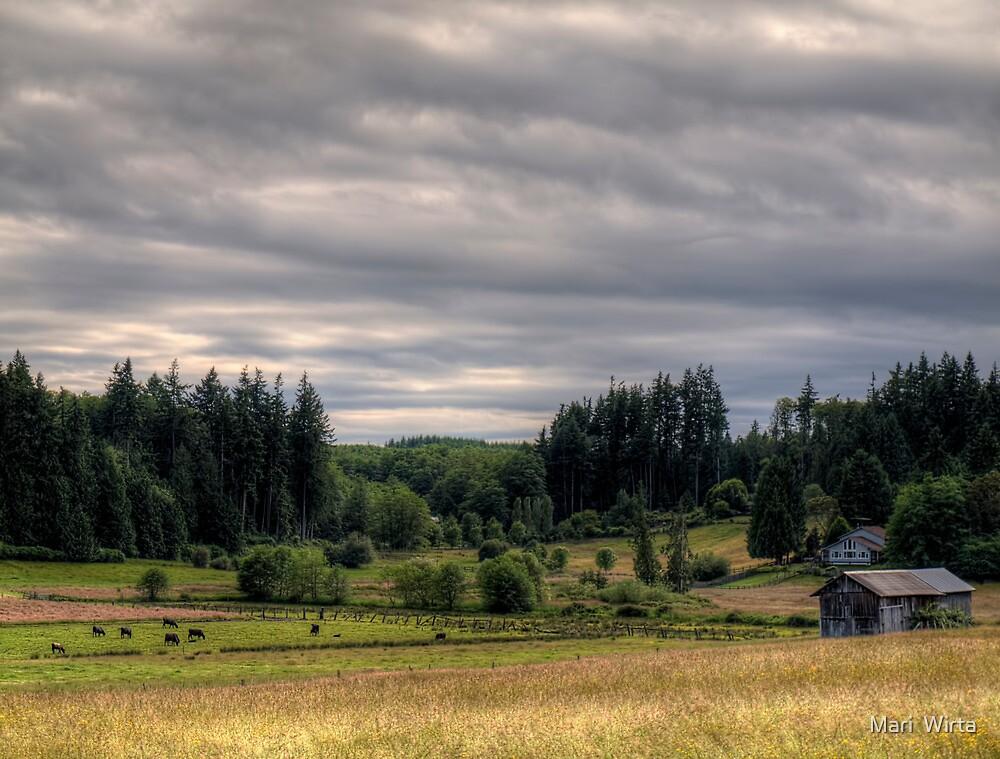 Farm in the Field by Mari  Wirta