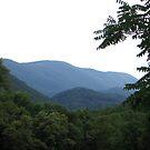 west virignia hills by melynda blosser