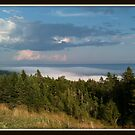 High above Fundy by Cameron  Allen Lamond