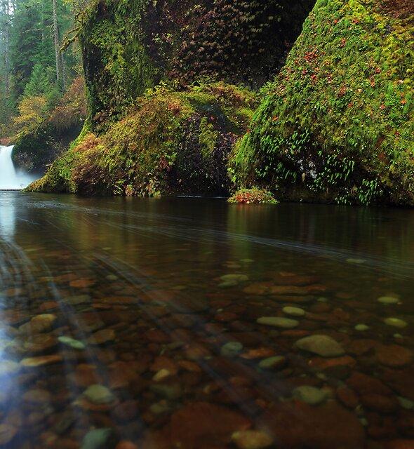 Punchbowl Falls I by Tula Top