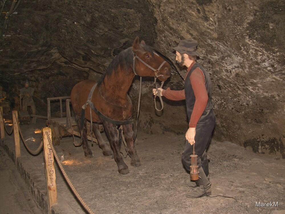Hard work miner  by MarekM