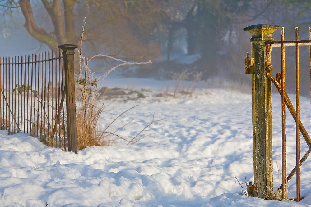 Beyond the Gates. . . by Gary Finnigan