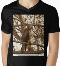 Red-Tailed Hawk as wise as Owl Mens V-Neck T-Shirt