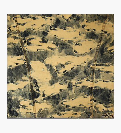 Water Camouflage Photographic Print
