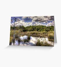 Hammock — Florida Everglades Greeting Card
