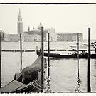 Venice Gondola in Canal by grorr76