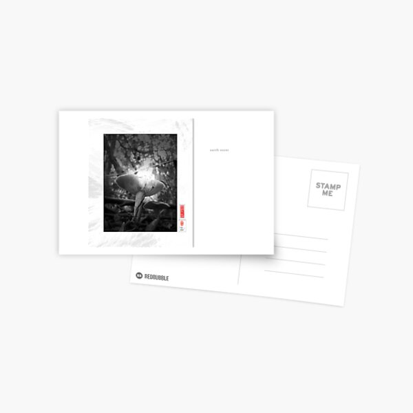 Mindfulness In Monochrome - Earth Scent Postcard