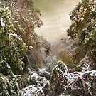 An Early Snow by Jessica Jenney