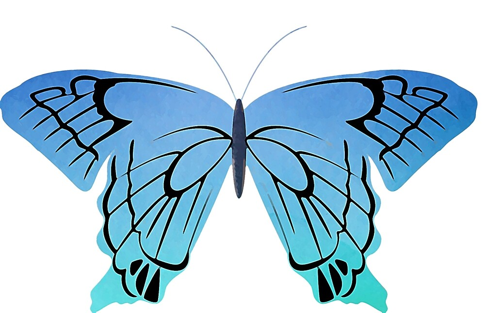 Blue butterfly drawing by mosfunky