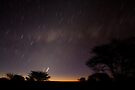 Kalahari Startrails by Will Hore-Lacy