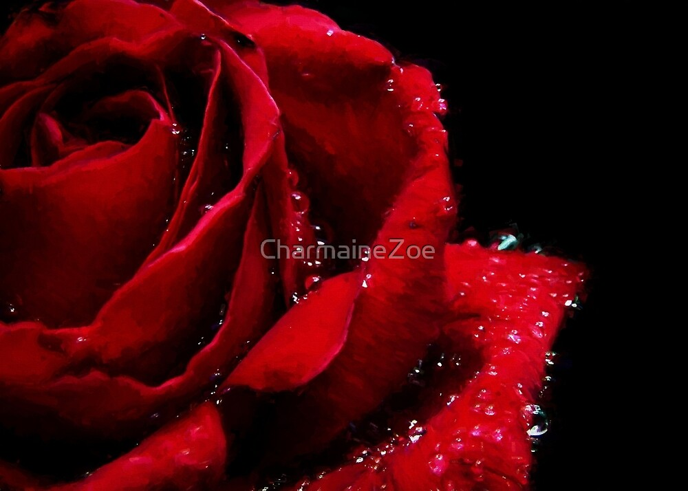 Blood Red Rose by CharmaineZoe