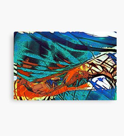 Abstract Feelings (my no. 400!!) Canvas Print
