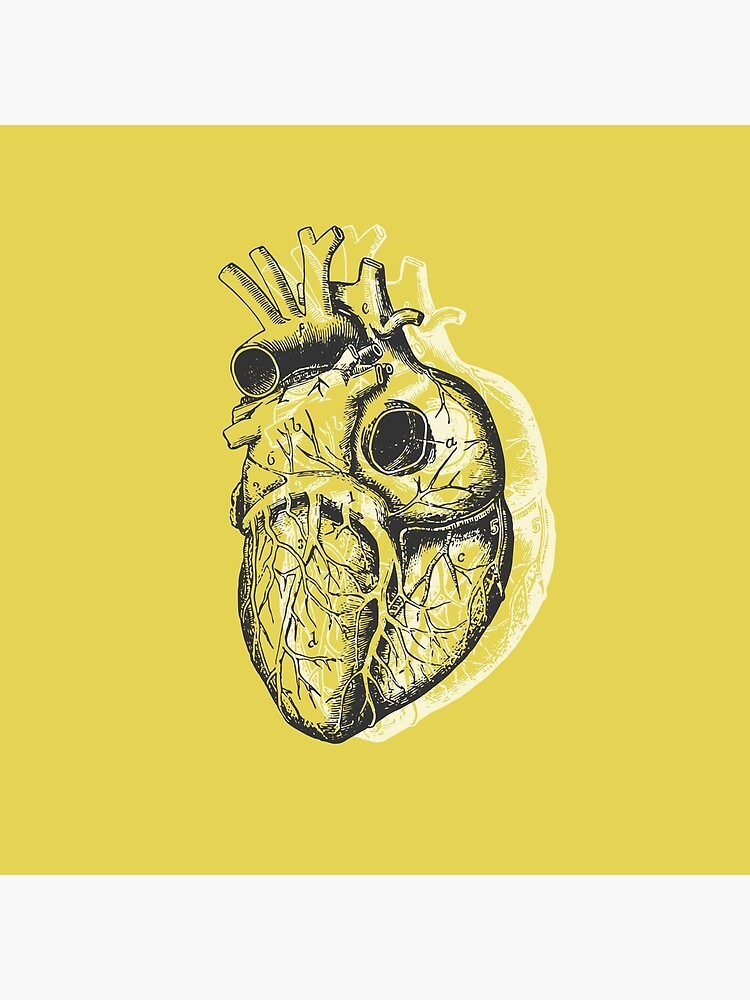 Anatomical Heart • Yellow • Pastel Goth by rike-mayer