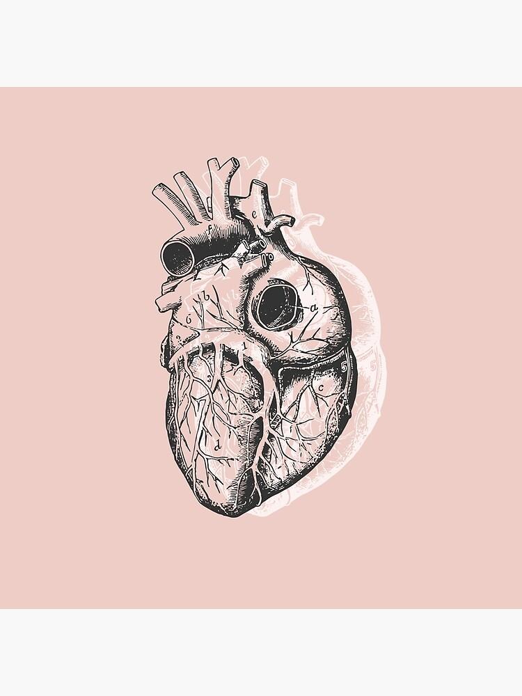Anatomical Heart • Pastel Pink • Minimalist Goth by rike-mayer